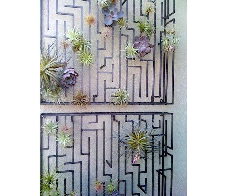 air-plant-trellis-design-sleuth-janet-hall