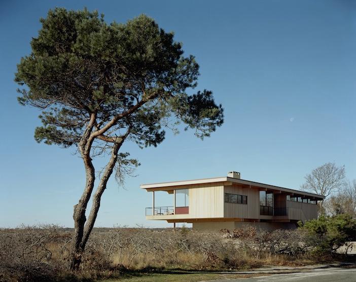 tamarkin-shaker-shelter-island-exterior-tree