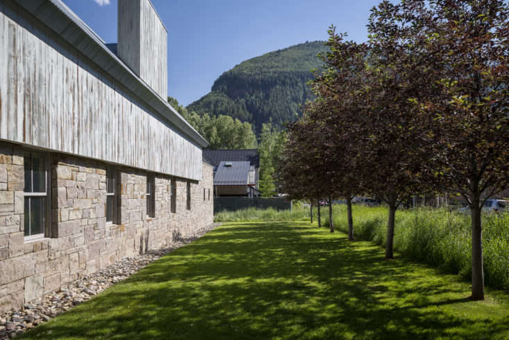An allee aside a Telluride home designed by John Pawson