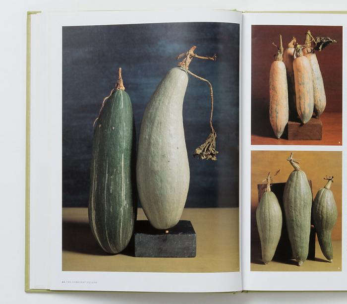 compleat-squash-book-pages-2