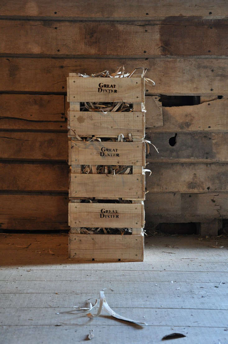 apple crates and kindling, Great Dixter Shop