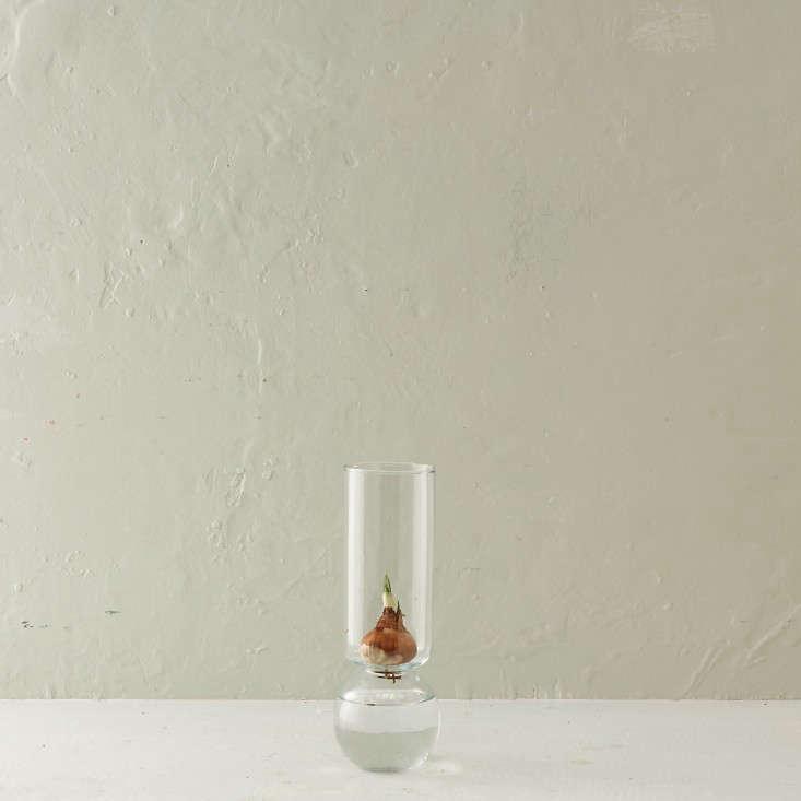 glass-bulb-vase-gardenista