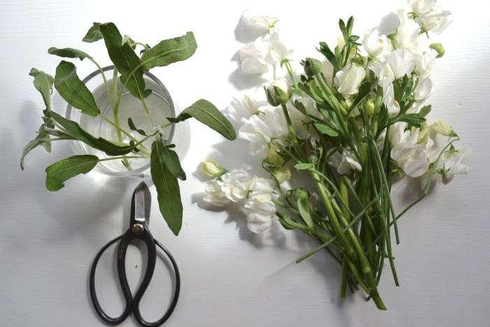 700_scissors-flowers-sage-leaves-700x467