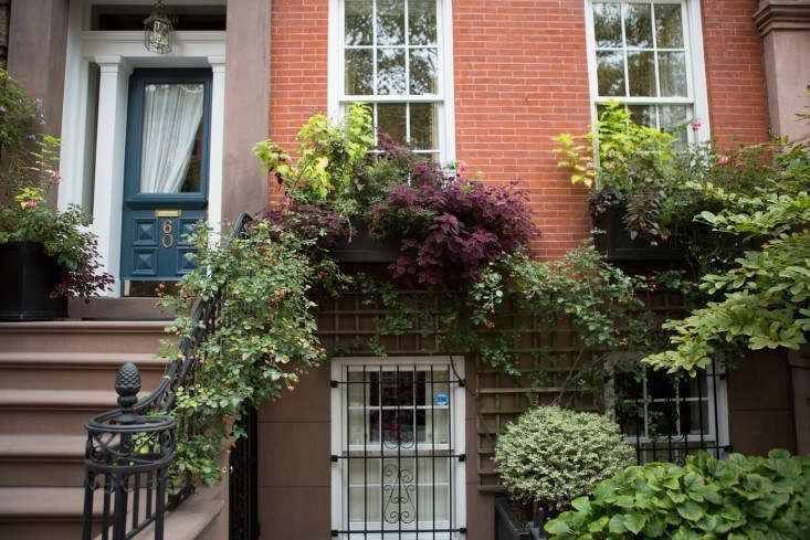 On Joralemon Street in Brooklyn Heights, a window box overflows. Photograph by Douglas Lyle Thompson for Gardenista. See more in Curb Appeal:  Ideas to Steal from Brooklyn Heights.