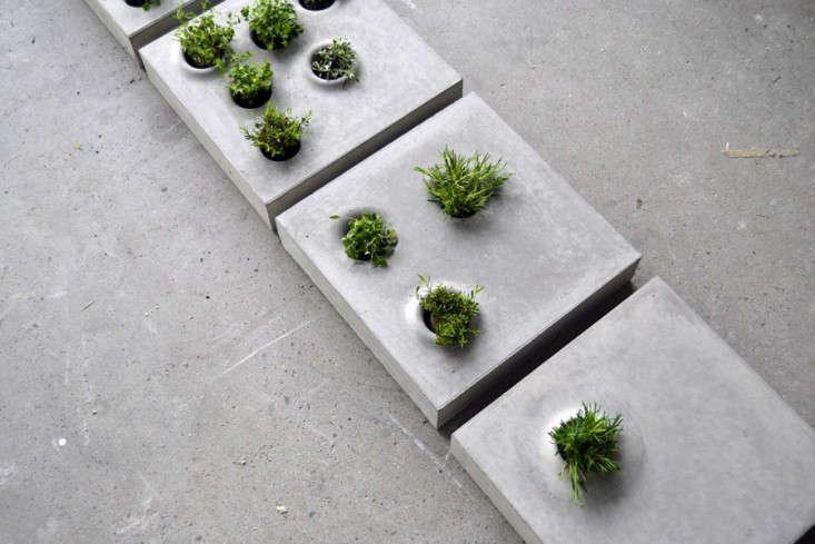 concrete-pavers-holes-for-plants