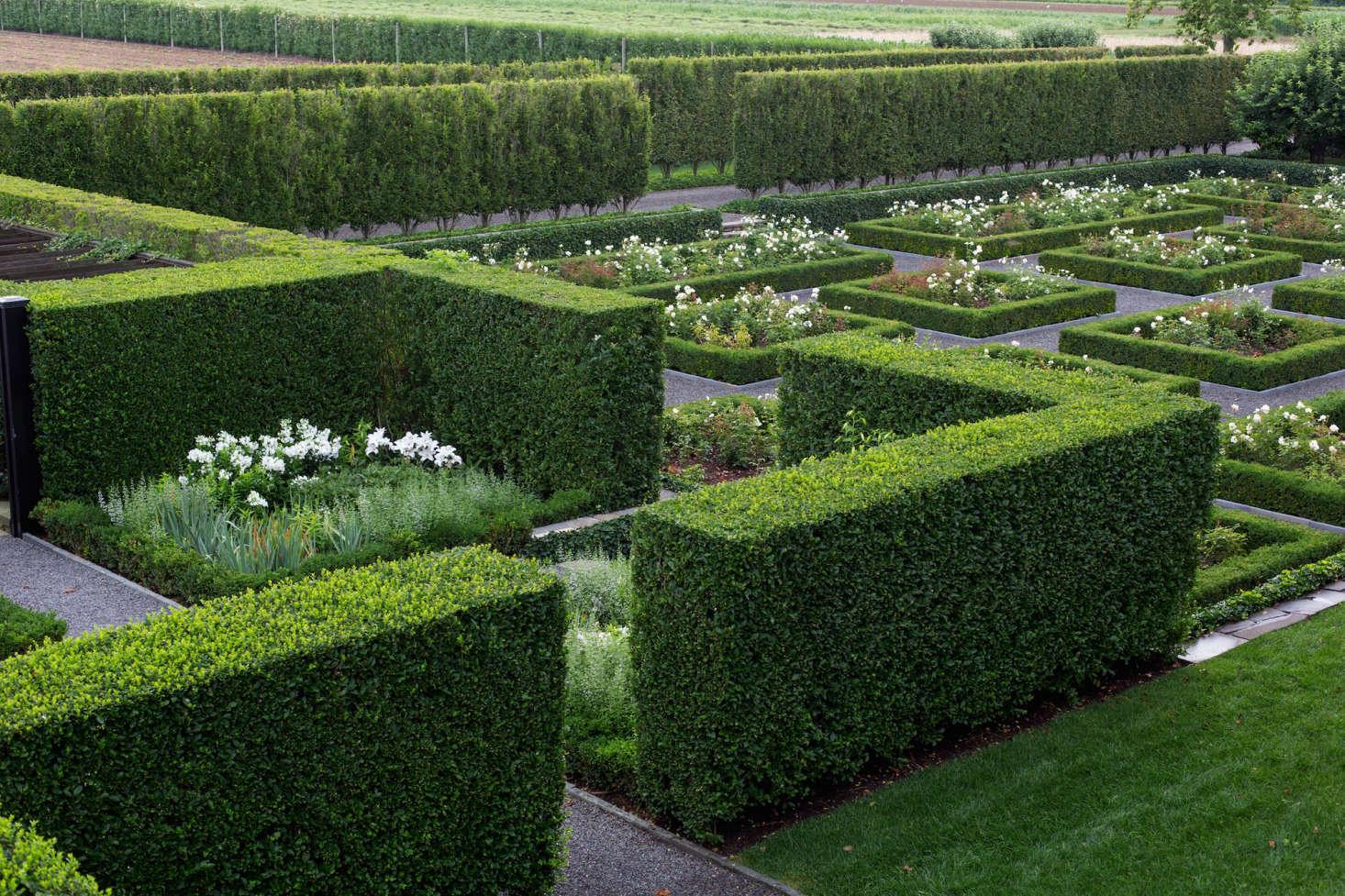 Hedges Watermill NY Garden designer Quincy Hammond
