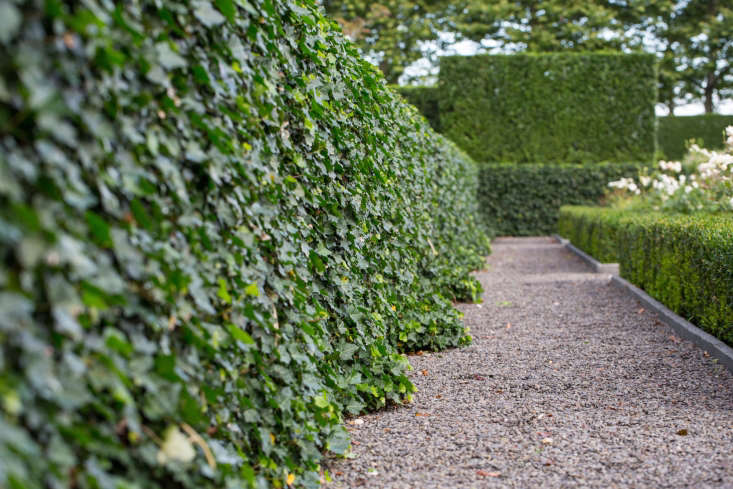ivy walls gravel paths watermill-ny-walled-garden designer quincy hammond