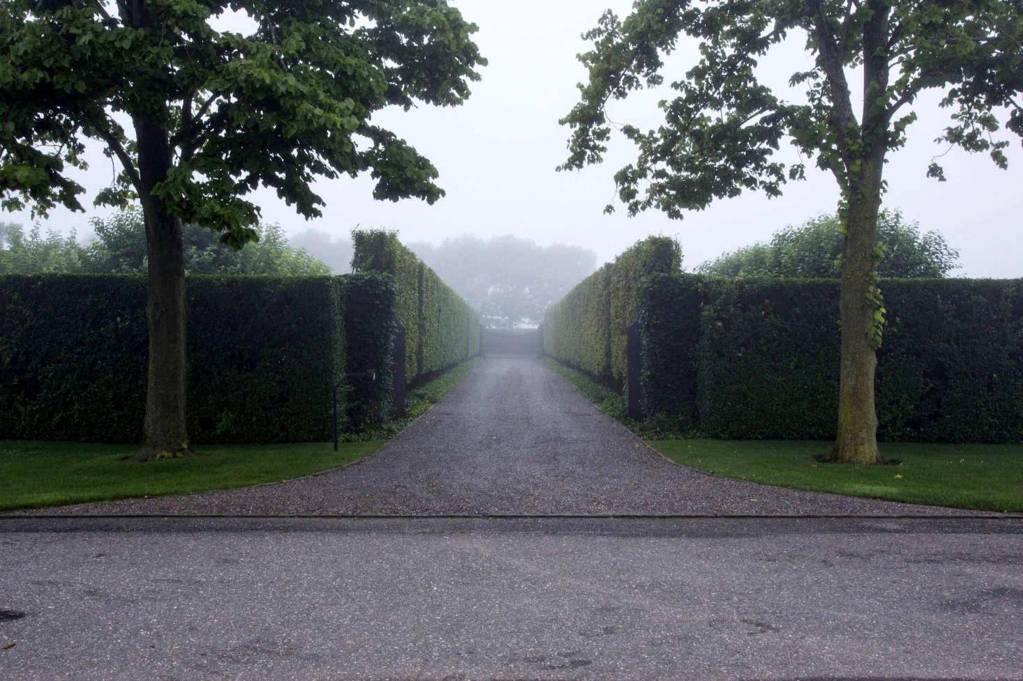 Hornbeams line driveway at entrance to Watermill, NY garden designer Quincy Hammond