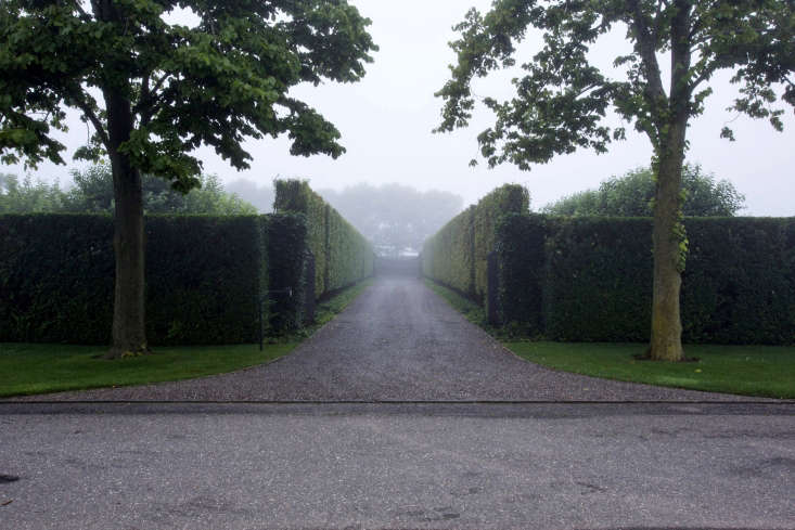 Hornbeams line driveway at entrance to Watermill, NY garden designer Quincy Hammond