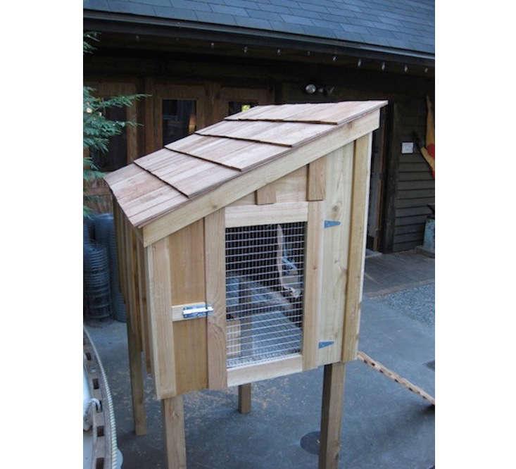 backyard-chicken-coop-saltboxdesigns