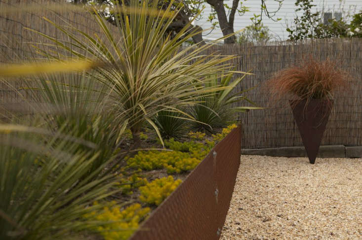 bamboo-fencing-metal-planters-gravel-gardenista
