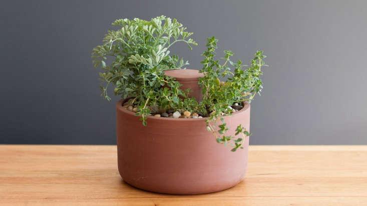 hero-joey-roth-self-watering-planter-gardenista