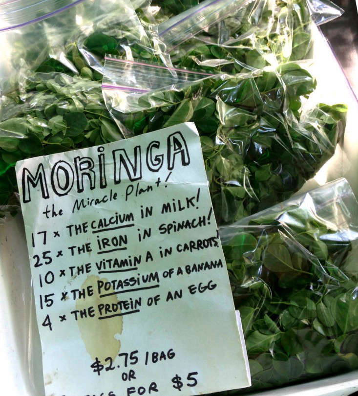 moringa-leaves-package-bag-erin-boyle