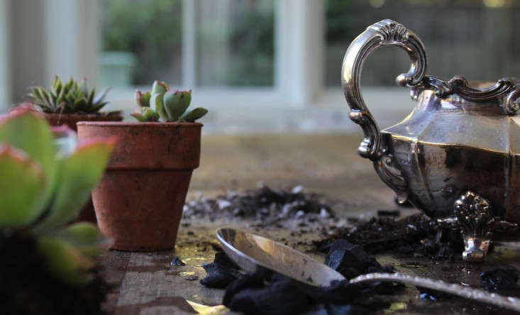 diy-succulents-silver-teapot-halloween-michelle-slatalla-4