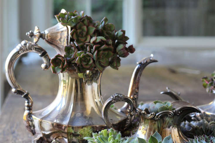 diy-succulents-silver-teapot-halloween-michelle-slatalla-8