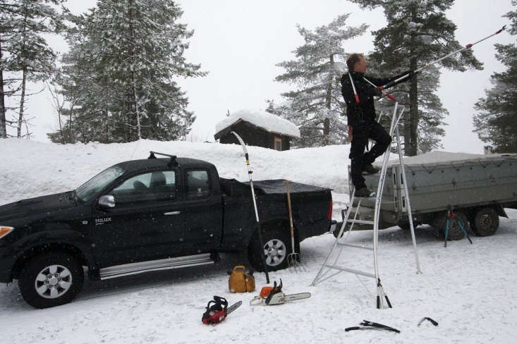 A Niwaki Tripod Ladder(£7.50) hasa stable base and will make the job feel a lot less wobblier. Here, HOLE Hagesenter designers prepare to prune pine trees in Norway.