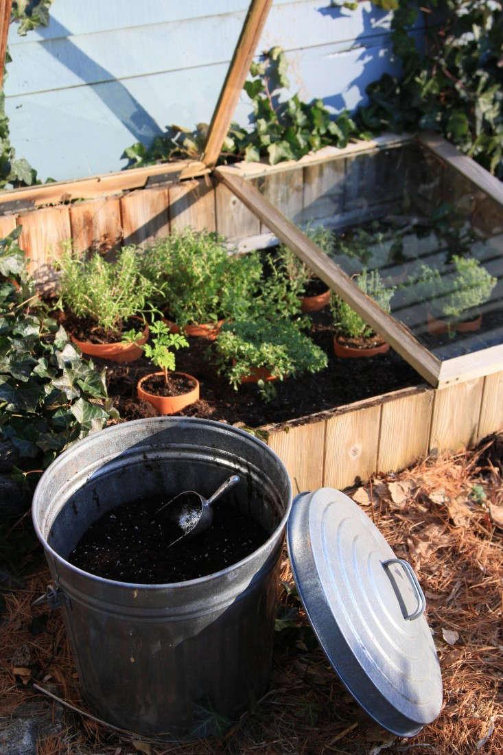 cold-frame-herbs-1-gardenista-733x1100