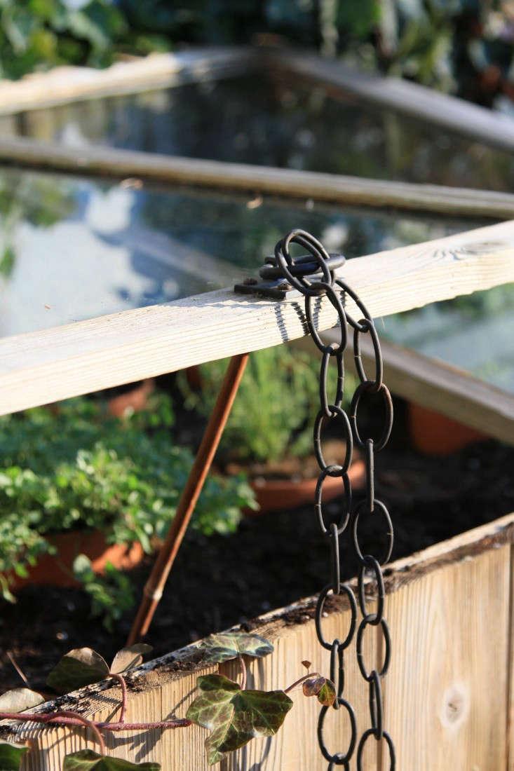 cold-frame-herbs-3-gardenista-733x1100