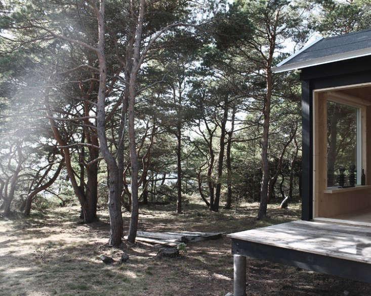 ermitage-woods-septembre-gardenista-733x586