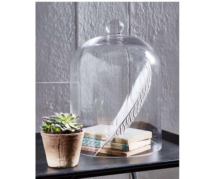 glass-bell-jar-cloche-gardenista