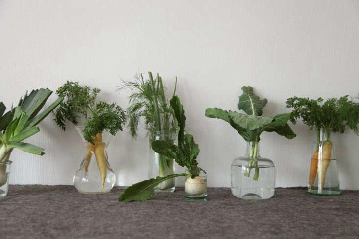 DIY-Vegetables-as-Decor-Alexa-Hotz-Remodelista-05-733x489