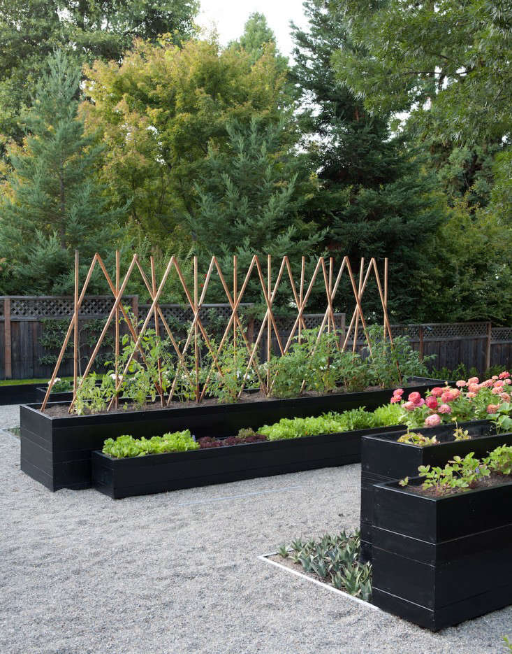 Kriste-Michelini-edible-garden-gardenista-considered-design-awards-1