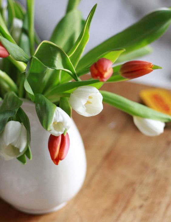 tulips-ironstone-pitcher-gardenista