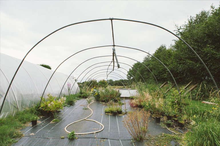 vervain-nursery-hoophouse-frame-gardenista