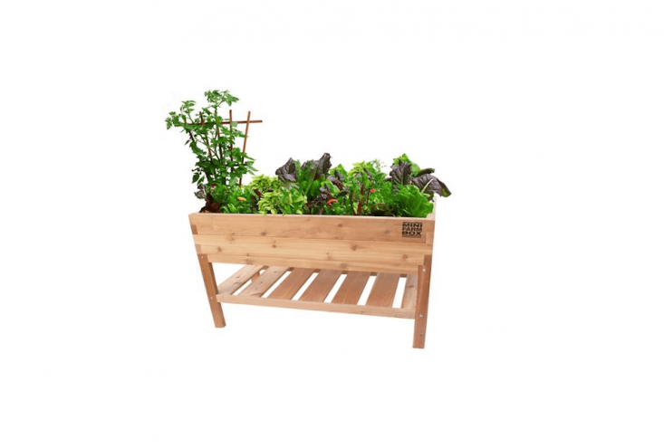An Elevated Table Garden from MiniFarm Box made of untreated cedar has a lower storage shelf and is resistant to termites and rot. It measures 48 inches long by \24 inches wide by 36 inches tall; \$\269.