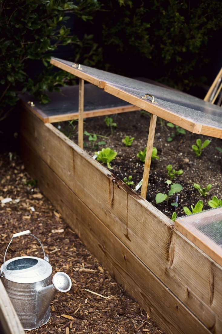 courtney-klein-cold-frame-sf-garden-watering-can-storq-gardenista
