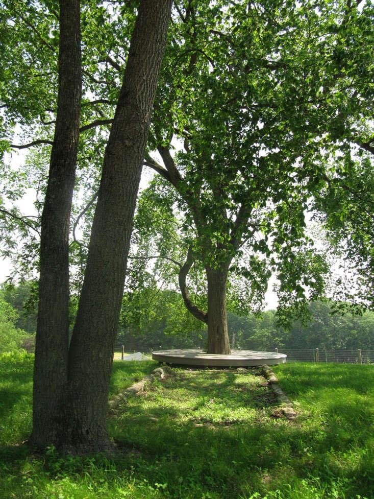 Wisniewski-elm-tree-bench-hudson-valley-landscape