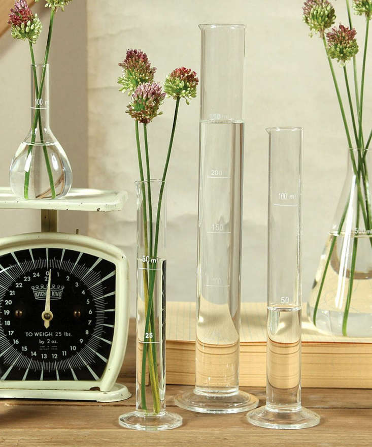 A Chemistry Glass Test Tube Vase measures \13.5 inches high and is \$30 from Bliss Home & Design.