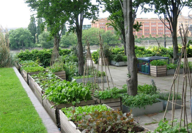 River-Cafe-raised-beds-by-Anna-Wardrop-gardenista