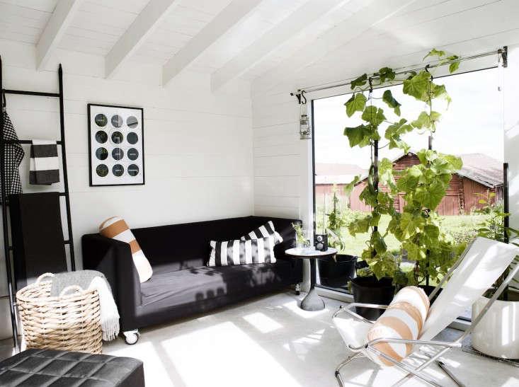 black-white-orangery-outbuilding-gardenista-indoor-vines