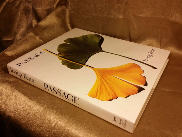 A vintage copy of Passage by Irving Penn is \$99.90 from Storenvy.