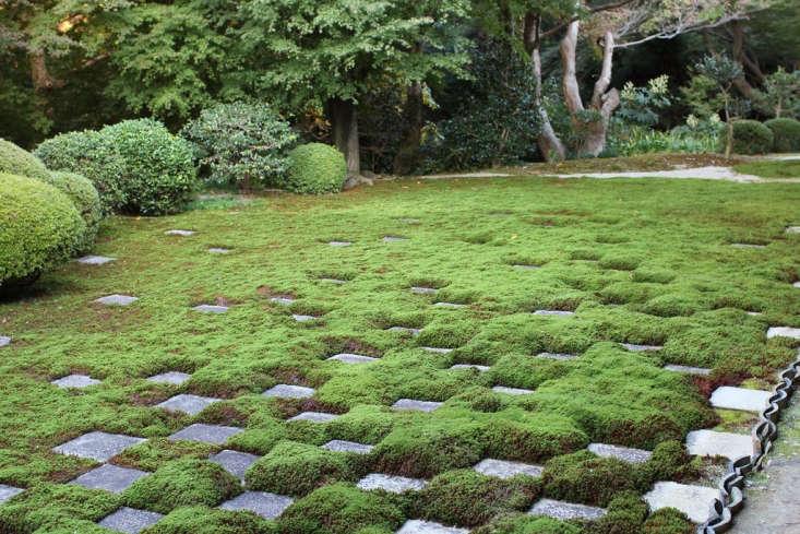 Tofukuji moss checkerboard by Kim Unertl via Flickr.