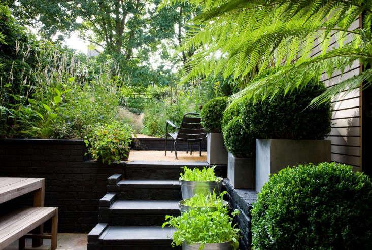 chris-moss-london-garden-black-steps-gardenista