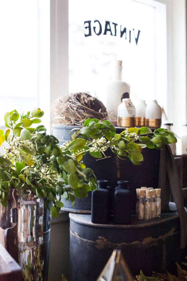 mistletoe-Garden-Apothecary-shop-half-moon-bay-gardenista-098-e1469831742687