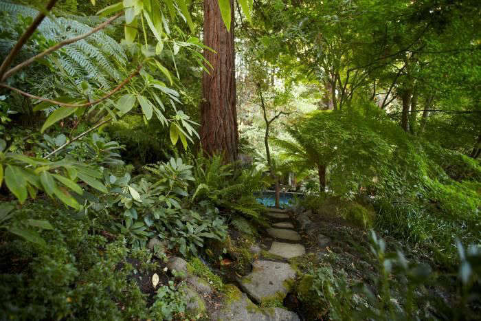 Ms. Gross routed the stream to lead to a fish pond and lined the path with ferns and plants with tropical foliage to enhance the property&#8