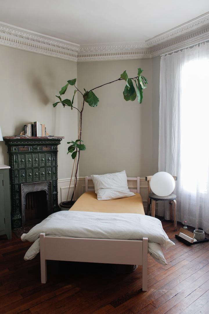 A fiddle leaf fig growing toward the light. Photograph by Natalie Weiss for Remodelista, from Done/Undone with Clarisse Demory in Paris.