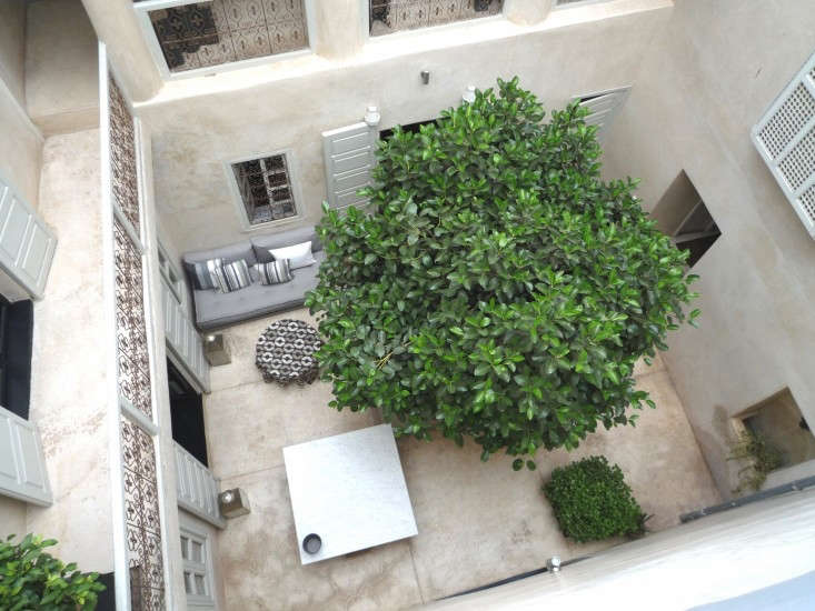 See more of this garden at Marrakech Modern: A Remodeled Riad for Rent on Remodelista. Photograph by Martin Raffone.