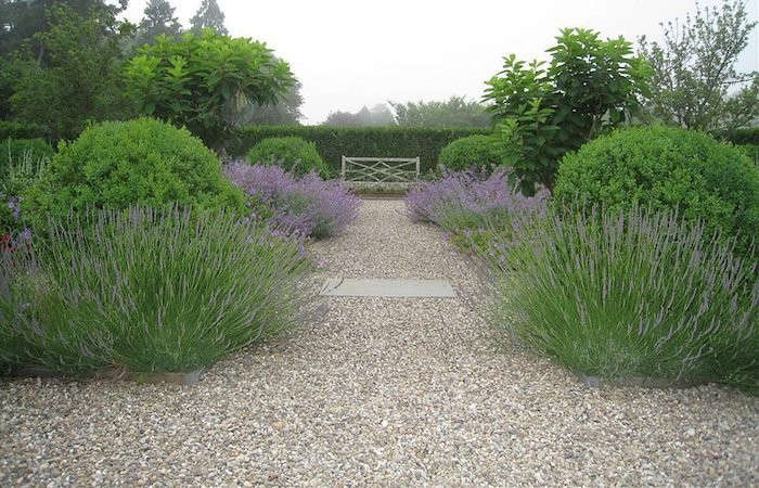 A seashell surface doubles as walkway and mulch in an herb garden where lavender flourishes in one of Landscape Architect Edmund Hollander's Grand Estate Gardens.