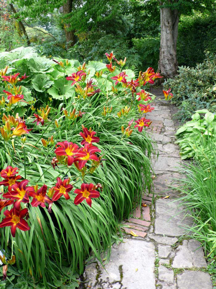 Above Daylilies in bloom in the gardens at Sissinghurst Castle in England. For more, see Garden Visit: Vita&#8
