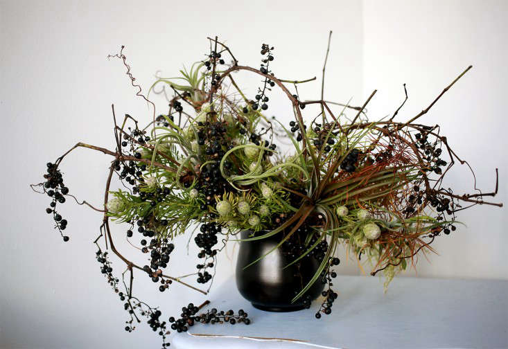 Sophia_Moreno_bunge_Gardenista_Arrangment_DIY_Tillandsia_Final