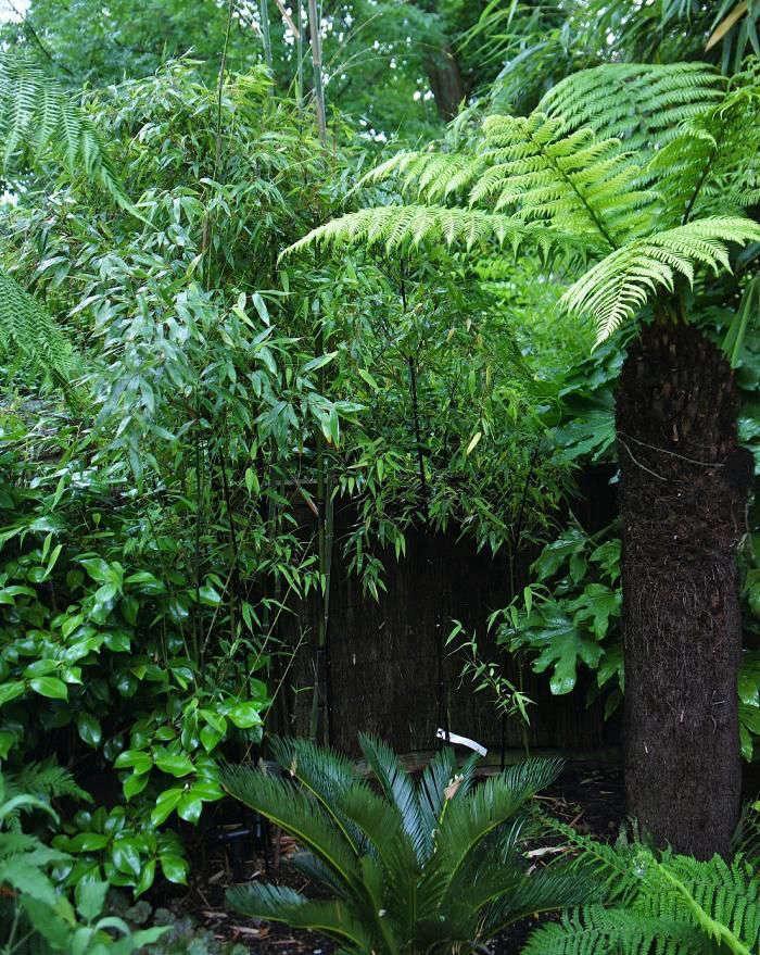 christine-hanway-garden-6-gardenista