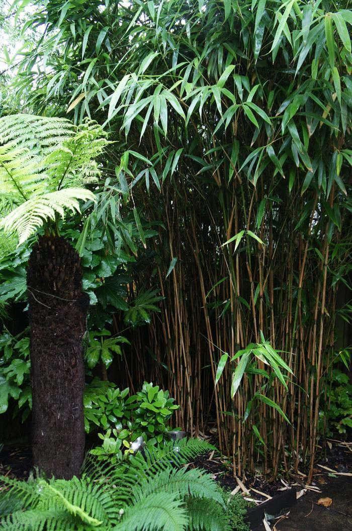 christine-hanway-garden-7-gardenista