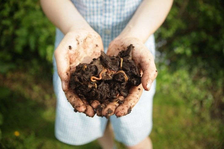 Photograph by Jim Powell for Gardenista. For more, see DIY Composting: A Man Obsessed.