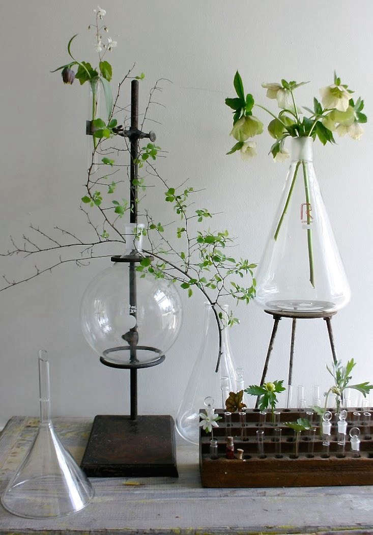 10-easy-pieces-labware-plant-stands-gardenista