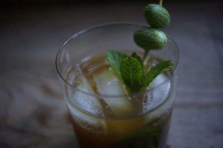 7cocktail-laura-silverman-gardenista