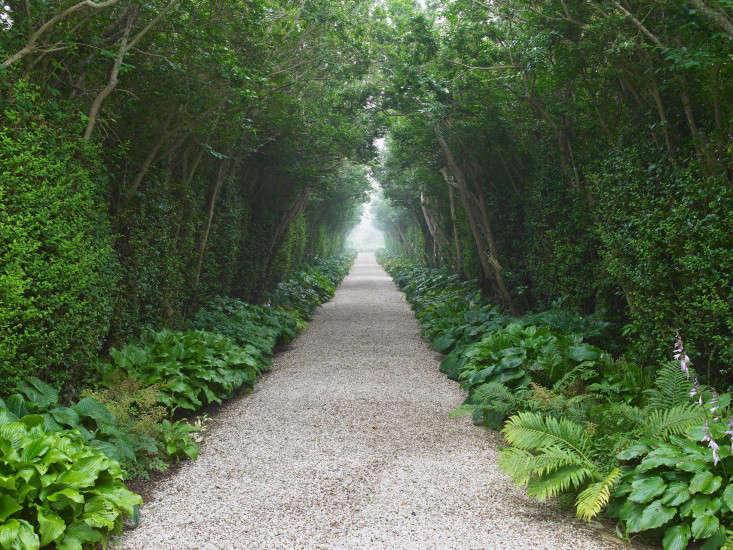 92-The-Good-Garden-Hollander-Gardenista